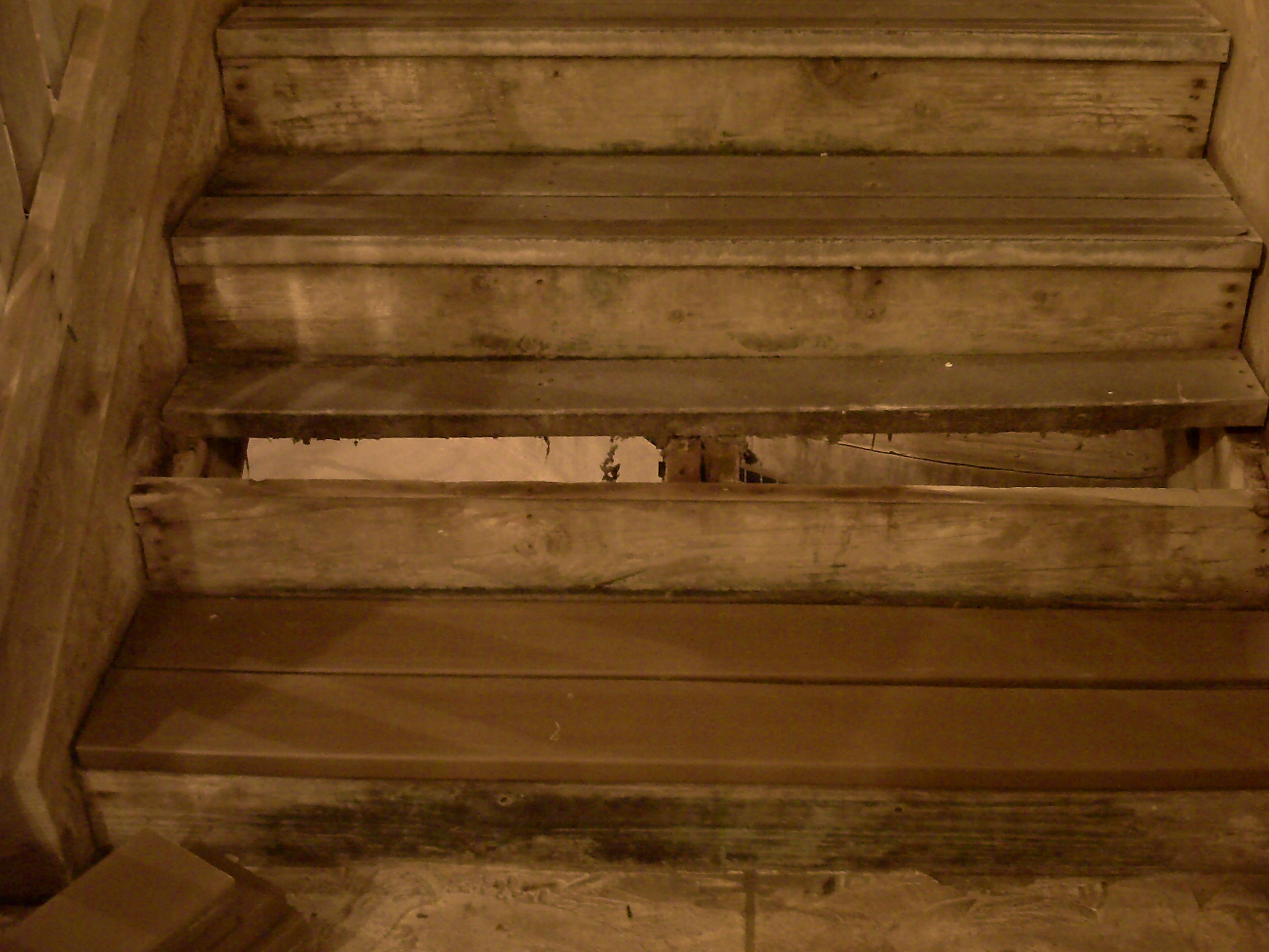 stepscloseup1.jpg
